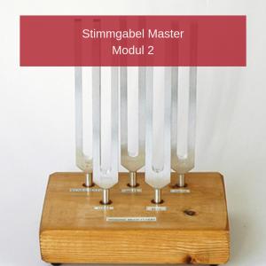 Stimmgabel-Master Modul 2 (Phonophorese)