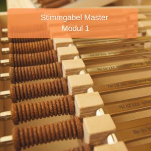 Stimmgabel- Master Modul 1